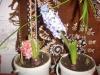 Выращивание гиацинтов