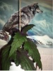 Гинура-синяя птица
