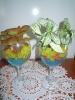 Гидрогель при выращивании комнатных растений