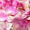 Чайная роза: варенье, фруктовый салат, чай из розы...