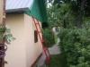 Выращиваю малину на даче.